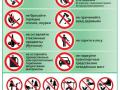 Pravila-povedenija-v-lesu