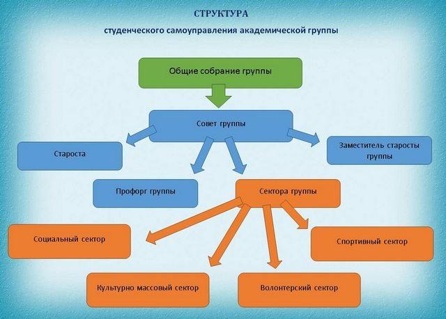 Структура студенческого самоуправления академической группы